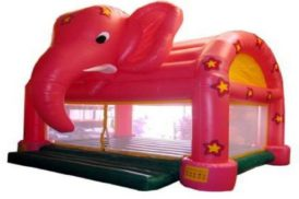 elephant[1]